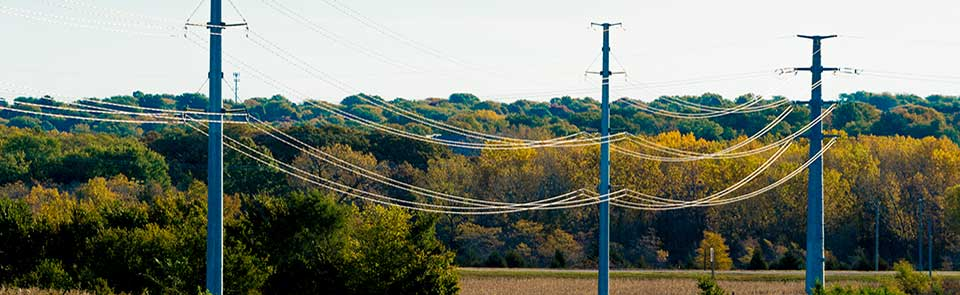 Image of power lines and poles